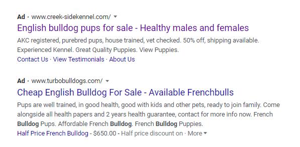 English Bulldog scam!